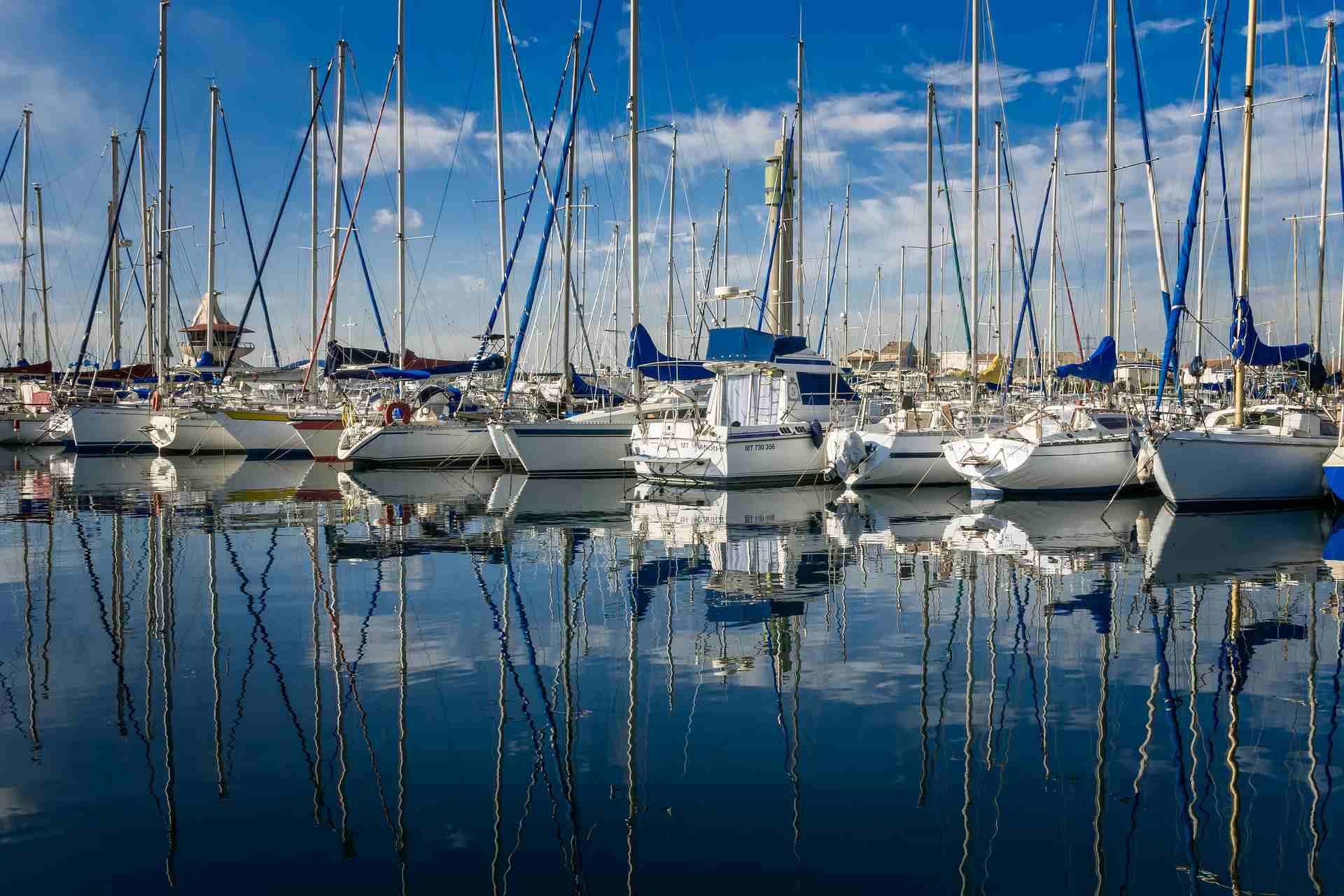 motor yachts at marina